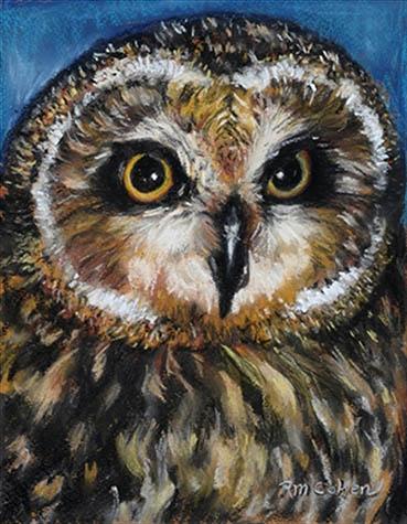 Short Eared Owl, Robin M. Cohen, 8x10 Soft Pastel $425