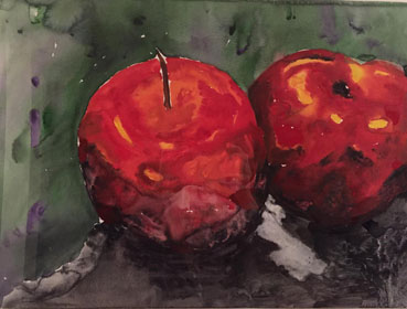 Red Delicious, Susan Spector, 14x20 Watercolor $2,000