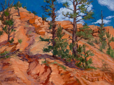 Red Canyon Erosion, Jane Thorpe, 12x16 Oil $1,050
