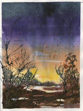 Desert Evening, Elizabeth Covington, 12x9 Watercolor and Walnut Ink $325