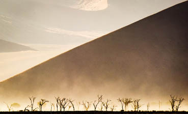 Sand Fog, Paul M Murray, 23x30 Photography $995